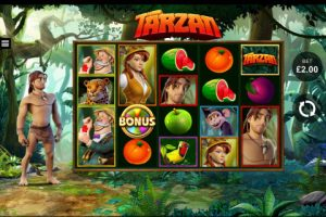 Software Providers -tarzan