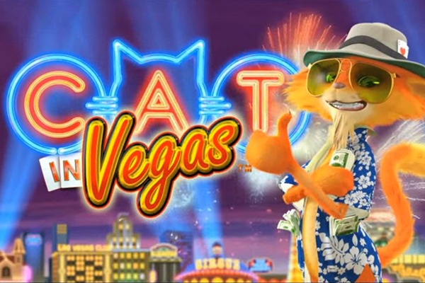 Play on Cat in Vegas
